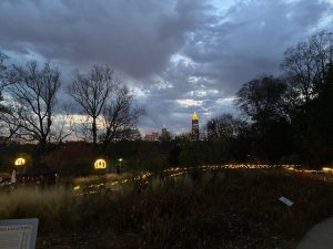 Atlanta Botanical Garden Holiday Lights 2020